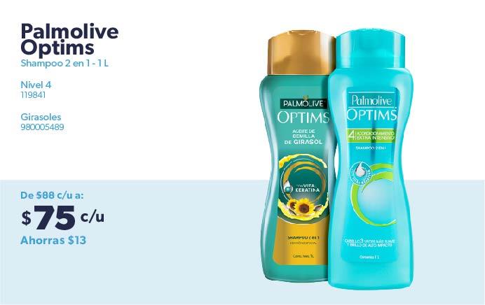 Shampoo 2 en 1 - 1 L